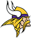 Sideline support for the Minnesota Vikings