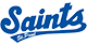 Official hospital of the Saint Paul Saints